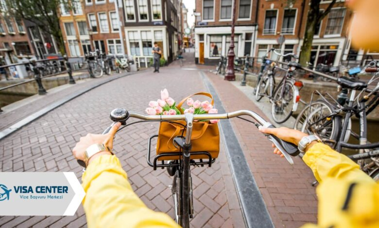 Hollanda Nüfusu